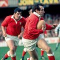 Wales 1976 Rugby